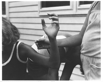 Untitled Jan Groover  (American, Plainfield, New Jersey 1943–2012 Montpon-Ménestérol, France)